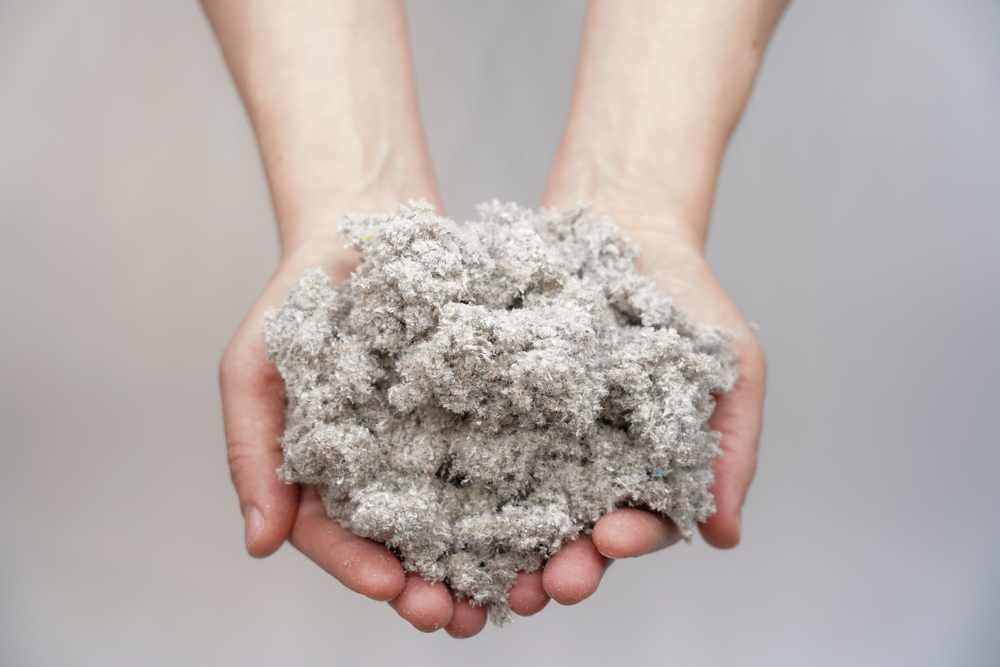 Man's hands holding cellulose insulation